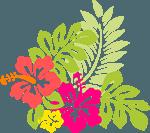 hawaii-150x133