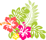 Decorative: Hawaiian flowers